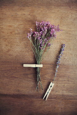 Kelly Sillaste FLOWERS AND CLOTHESPINS Miscellaneous Objects
