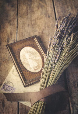 Amy Weiss LAVENDER AND PHOTOGRAPH Miscellaneous Objects