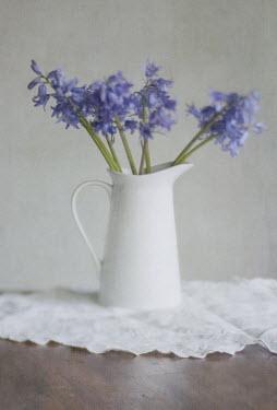 Jill Ferry FLOWERS IN A JUG Flowers