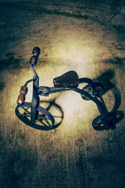 Elisabeth Ansley OLD METAL TRICYCLE Miscellaneous Objects