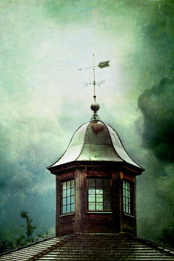 Stephanie Frey WEATHERVANE IN STORMY WEATHER Miscellaneous Buildings