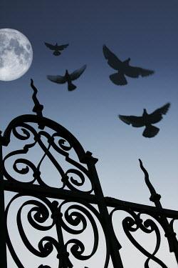 Ilona Wellmann GATE WITH BIRDS AND MOON Gates