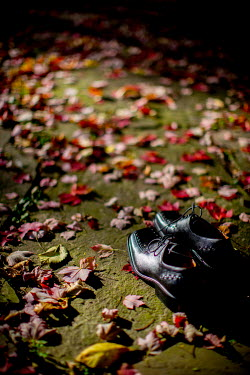 Laura Blost SHOES WITH FALLEN LEAVES Miscellaneous Objects