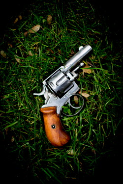 Laura Blost OLD GUN ON GRASS Weapons