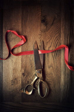 Catherine Macbride SCISSORS WITH RED RIBBON Miscellaneous Objects
