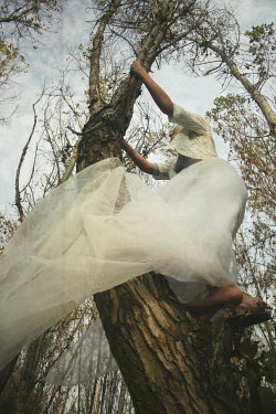 Hanna Nemeth WOMAN IN WEDDING DRESS CLIMBING TREE Women