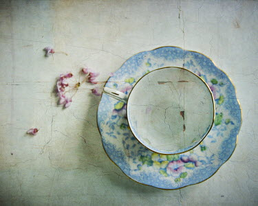 Michelle Anderson CHINA CUP AND SAUCER WITH FLOWERS Miscellaneous Objects