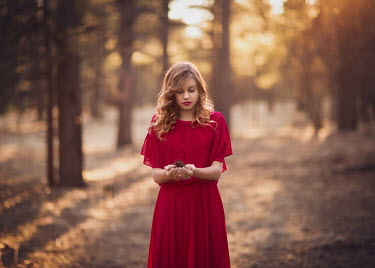 Lisa Holloway GIRL IN DRESS WITH PINE CONE Women