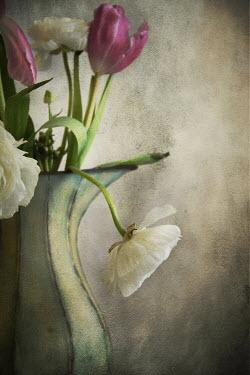 Michelle Anderson FLOWERS IN VASE Flowers