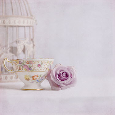 Michelle Anderson ROSE WITH CUP AND BIRDCAGE Miscellaneous Objects