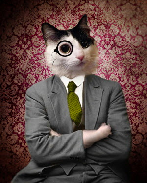 Lisa Howarth CAT IN A SUIT WITH A MONOCLE Animals