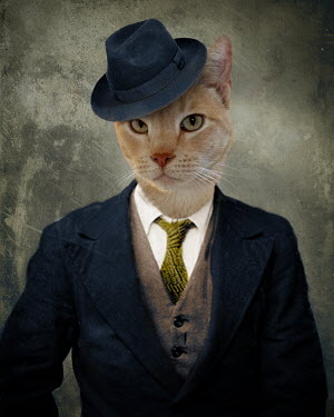Lisa Howarth CAT IN SUIT AND HAT Animals