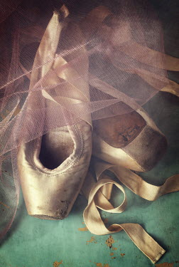 Amy Weiss WORN BALLET SHOES WITH NETTING Miscellaneous Objects