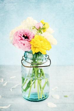 Stephanie Frey FLOWERS IN GLASS JAR Flowers
