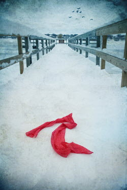 Dave Curtis ABANDONED SCARF ON SNOWY PIER Miscellaneous Objects
