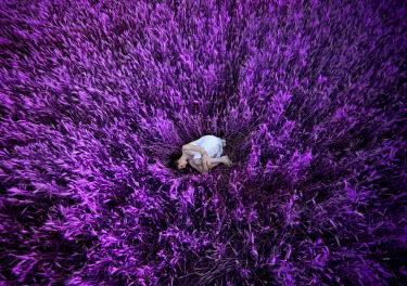 Pini Hamou WOMAN SLEEPING IN FIELD OF FLOWERS Women