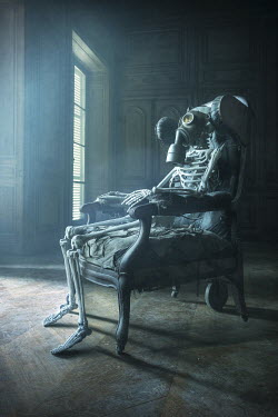 Franck Losay SKELETON WEARING GAS MASK IN ANTIQUE ARMCHAIR Miscellaneous Objects