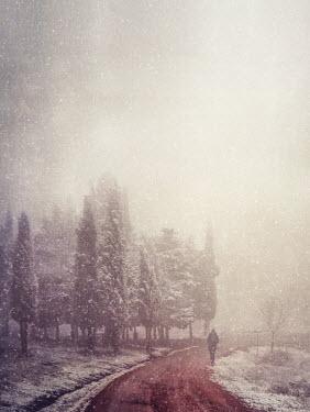 Marta Nardini MAN ON SNOWY COUNTRY ROAD Men