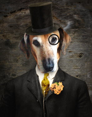 Lisa Howarth DOG IN TOP HAT AND MONOCLE Animals