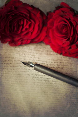 Karina Simonsen OLD LETTER WITH FOUNTAIN PEN AND ROSES Miscellaneous Objects