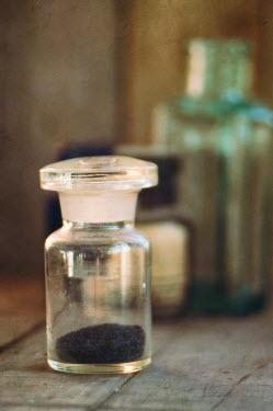 Jill Ferry GLASS SPECIMEN JAR Miscellaneous Objects