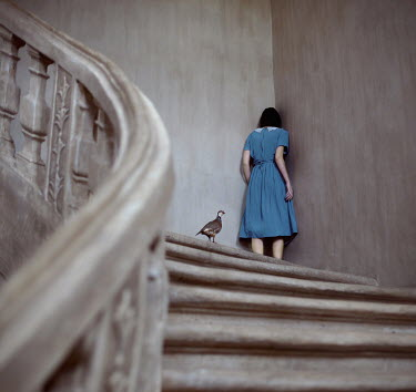 Rebeca Cygnus WOMAN ON STAIRS WITH BIRD Women
