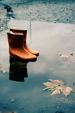 Nilufer Barin WELLINGTON BOOTS IN PUDDLE Miscellaneous Objects