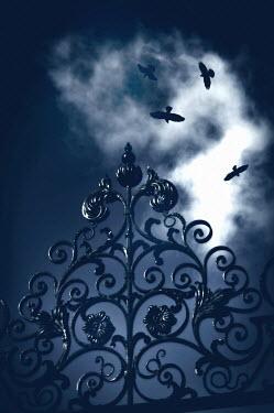 Thomas Szadziuk ORNATE GATES WITH BIRDS Gates