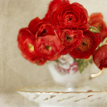 Eva Ricci RED FLOWERS WITH CUP AND SAUCER Miscellaneous Objects