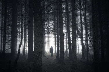 Iain Sarjeant WOMAN IN EERIE FOREST Women