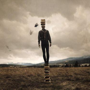 Joel Robison MAN ON STACK OF BOOKS IN FIELD Men