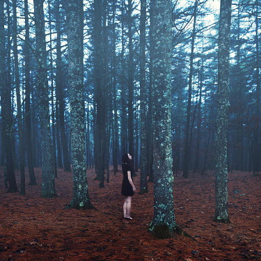 Sarah Ann Loreth YOUNG WOMAN STANDING IN FOREST Women
