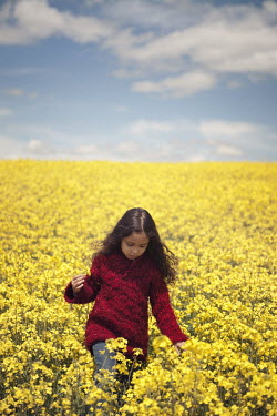 Maria Jose Rivera LITTLE GIRL IN RAPE SEED FIELD Children
