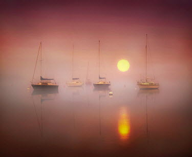 Adrian Leslie Campfield SAILING BOATS ON WATER AT SUNRISE Boats