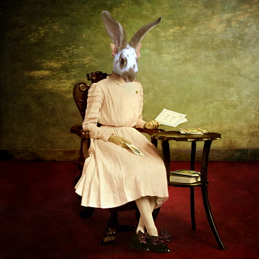 Martine Roch RABBIT IN DRESS SITTING BY TABLE Animals
