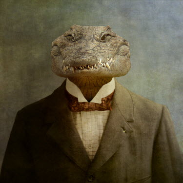 Martine Roch CROCODILE IN SUIT AND BOWTIE Animals