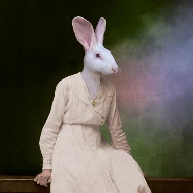 Martine Roch RABBIT SITTING IN PINK DRESS Animals