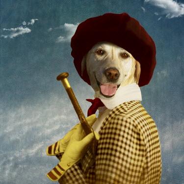 Martine Roch DOG IN JACKET, GLOVES, AND HAT Animals