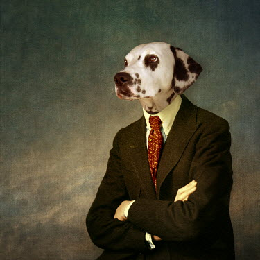 Martine Roch DOG IN A SUIT AND TIE Animals
