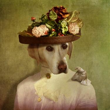 Martine Roch DOG IN HAT WITH BIRD ON SHOULDER Animals