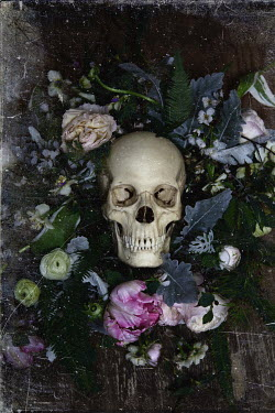 Elisa Lazo de Valdez SKULL SURROUNDED BY FLOWERS Miscellaneous Objects