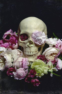 Elisa Lazo de Valdez SKULL STILL LIFE WITH FLOWERS