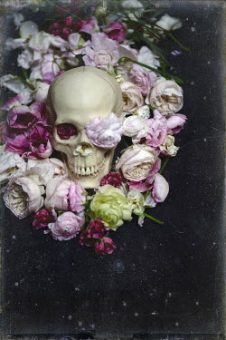 Elisa Lazo de Valdez SKULL STILL LIFE WITH FLOWERS Miscellaneous Objects