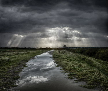 Adrian Leslie Campfield PATHWAY IN MARSHES WITH STORM Fields