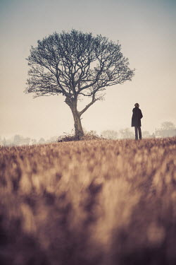 Tim Daniels MAN ALONE IN FIELD WITH TREE Men
