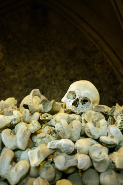 Stephen Mulcahey HUMAN SKULL ON TOP OF PILE OF BONES Miscellaneous Objects