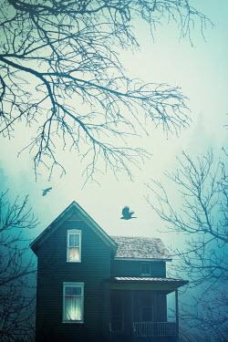 Sandra Cunningham HOUSE AND FLYING BIRDS UNDER TREES Houses