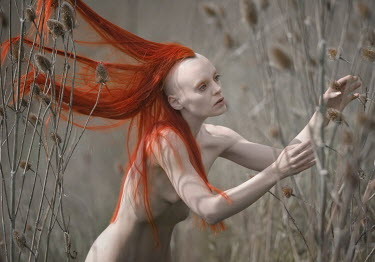 Christian Weiss SURREAL RED HAIRED NUDE WOMAN OUTSIDE Women
