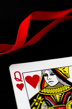 Trevor Payne QUEEN OF HEARTS PLAYING CARD CLOSE UP Miscellaneous Objects