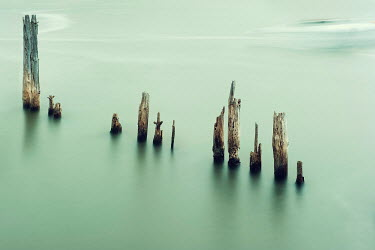Christine Amat BROKEN FENCE POSTS IN CALM SEA WATER Seascapes/Beaches